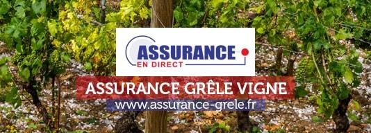 assurance grele vigne