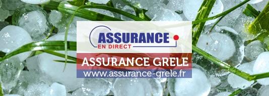 assurance-culture-fruitiere